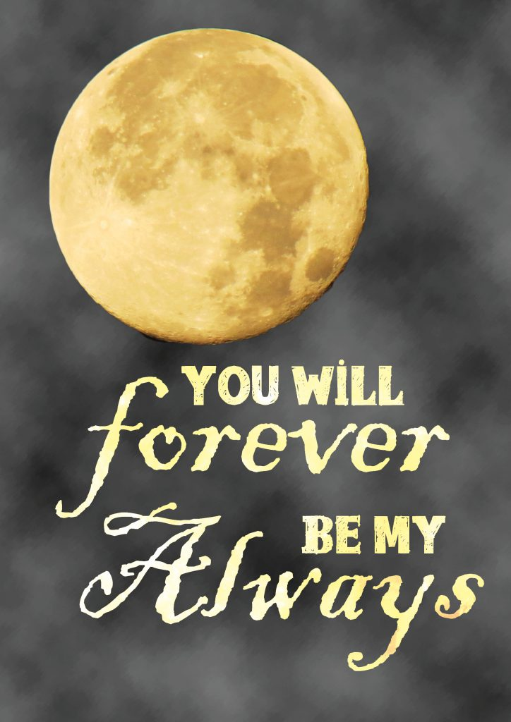 youwillforever_2_A3_1